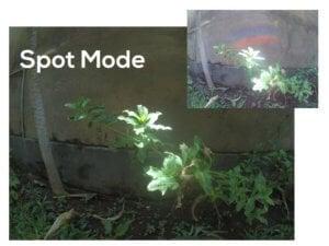 spotmode-001